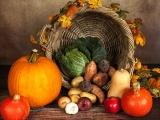 Happy Thanksgiving fromDSC